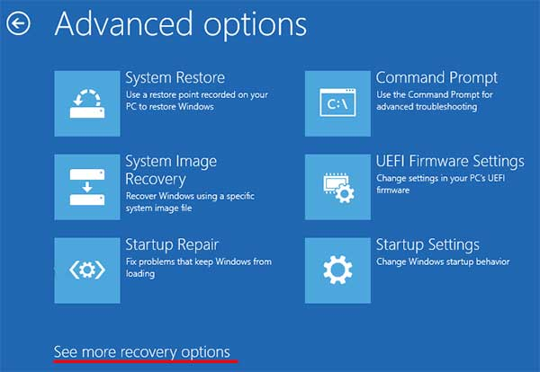 Windows 10 Recovery Advanced Options